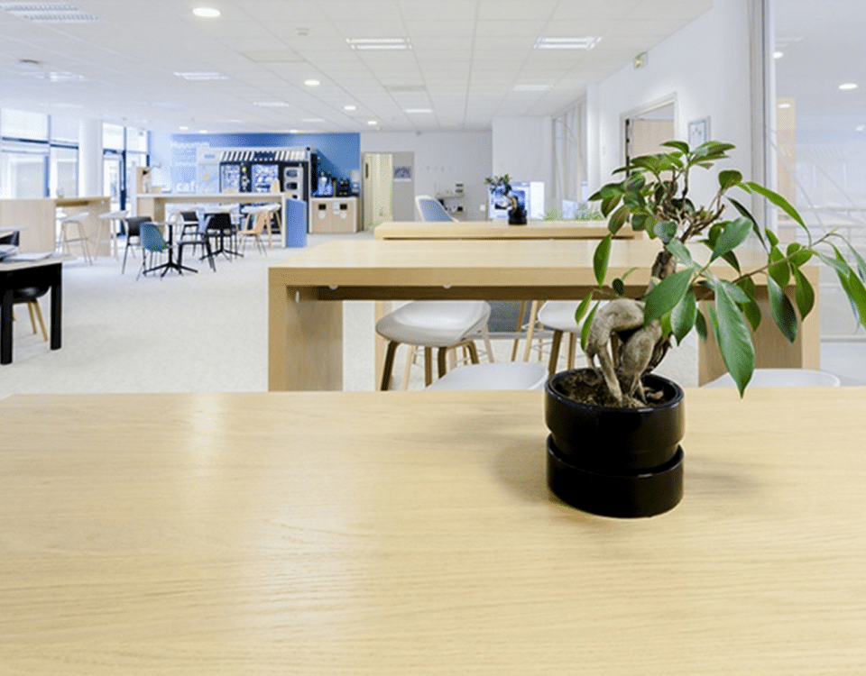 Chouette assurance coworking massy