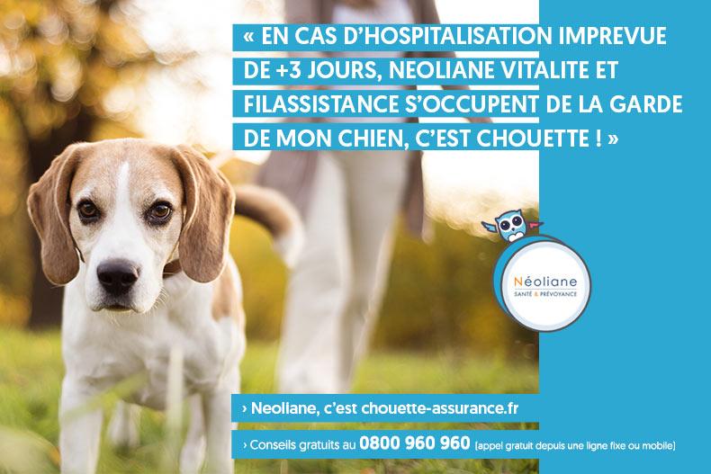 filassistance hospitalisation garde animale et enfants ou aide menagere Neoliane Vitalite