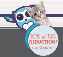 promo devis assurance animaux c'est Chouette assurance !